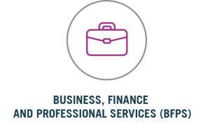 Business Finance & Professional Services